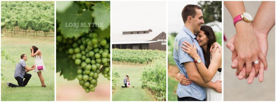 Grape Creek Vineyards - Summer